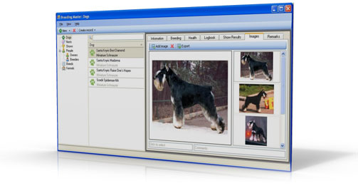 Breeding Master: Easy and powerful breeding software. Main window screenshot